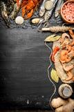свежие продукты моря Продукт моря с специями и травами Стоковое Изображение RF