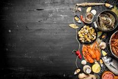 свежие продукты моря Продукт моря с специями и травами Стоковое Изображение