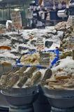 свежие продукты моря сбывания Стоковые Изображения RF