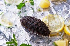 свежие продукты моря Стоковые Фотографии RF