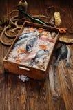 Свежие рыбы в владении корабля стоковое изображение rf