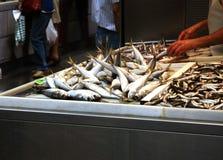 Свежие рыбы в испанском рынке Стоковое Изображение