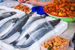 Свежие рыбы в различных размерах кладя на таблицу Стоковая Фотография RF