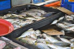 Свежие рыбы на влажном рынке Стоковое фото RF