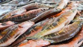 Свежие рыбы на рынке в Фуншале Стоковые Изображения RF
