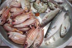 Свежие рыбы на рынке морепродуктов фермеров Стоковое Изображение