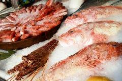 Свежие рыбы на стенде для продажи Стоковые Изображения RF