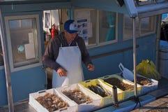 Свежие рыбы прямо от моря Стоковое Изображение