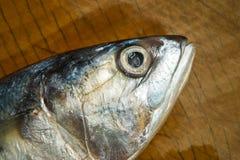 Свежие рыбы скумбрии на деревянном Стоковая Фотография RF