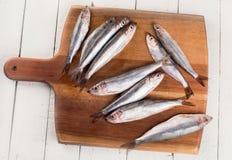 Свежие рыбы шпротины Стоковое Изображение RF