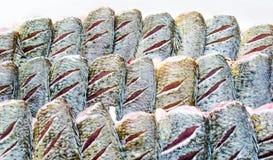 Свежие рыбы Стоковое Фото