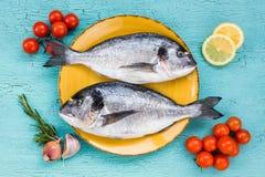 Свежие рыбы dorado на желтых плите и овощах на голубой предпосылке Стоковые Фотографии RF