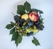 Свежие смешанные плодоовощи на плите Стоковая Фотография