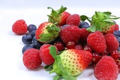Свежие смешанные ягоды стоковое изображение rf