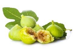 Свежие смоквы при свои листья изолированные на белой предпосылке стоковая фотография