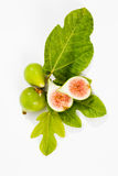 Свежие смоквы с листьями на белой предпосылке Стоковые Изображения
