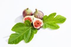 Свежие смоквы с листьями на белой предпосылке Стоковая Фотография RF