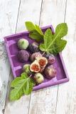 Свежие смоквы, Ficus Carica и листья, в фиолетовом деревянном подносе Стоковые Изображения