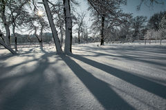 Свежие снежок и тени на солнечный день зимы Стоковые Фотографии RF