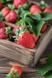 Свежие сочные клубники с листьями Предпосылка клубники еда принципиальной схемы здоровая Свежие органические ягоды Стоковое фото RF