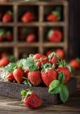 Свежие сочные клубники с листьями Предпосылка клубники еда принципиальной схемы здоровая Свежие органические ягоды Стоковое Изображение RF