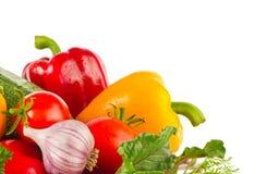 Свежие сочные органические овощи и зеленые цвета Стоковая Фотография