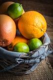 Свежие сочные цитрусовые фрукты в корзине Стоковые Фото