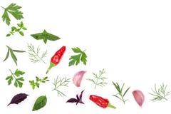 Свежие специи и травы изолированные на белой предпосылке Чеснок перчинок chili тимиана базилика петрушки укропа Взгляд сверху Стоковые Фото