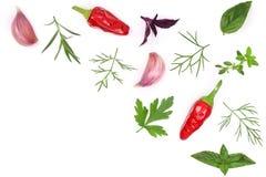 Свежие специи и травы изолированные на белой предпосылке Чеснок перчинок chili тимиана базилика петрушки укропа Взгляд сверху Стоковое фото RF