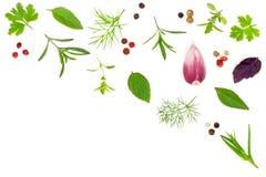 Свежие специи и травы изолированные на белой предпосылке Чеснок перчинок tartun тимиана базилика петрушки укропа Взгляд сверху Стоковая Фотография RF