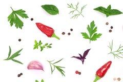 Свежие специи и травы на белой предпосылке Чеснок перчинок chili тимиана базилика петрушки укропа Взгляд сверху Стоковая Фотография RF