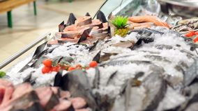 Свежие среднеземноморские рыбы на счетчике магазина, во льду, конец-вверх видеоматериал