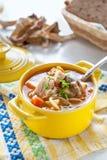 Свежие суп и лапши подосиновика самонаводят в желтой деревне tureen стоковое фото