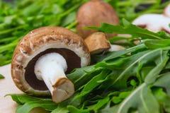 Свежие сырцовые грибы коричневеют грибы и зеленый arugula на woode Стоковая Фотография