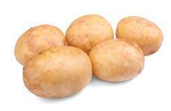 Свежие, сырцовые и сырые картошки, изолированные на белой предпосылке Питательная и естественная vegetable свежая еда земледелия Стоковое Изображение RF