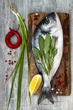 Свежие сырые рыбы леща dorado или моря с лимоном, ароматичными травами, овощами и специями над серой каменной предпосылкой Взгляд Стоковые Фото