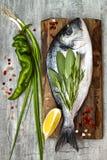 Свежие сырые рыбы леща dorado или моря с лимоном, ароматичными травами, овощами и специями над серой каменной предпосылкой Взгляд Стоковые Изображения