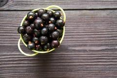 Свежие сладостные blackcurrants в шаре Стоковое фото RF