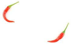 Свежие тайские перцы chili изолированные на белой текстуре предпосылки еды предпосылки Стоковая Фотография
