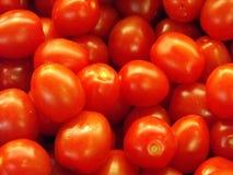 Свежие томаты вишни в массе Стоковая Фотография