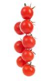 Свежие томаты вишни на ветви Стоковое фото RF