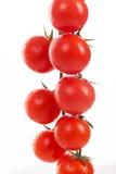 Свежие томаты вишни на ветви Стоковые Фото