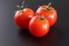 Свежие томаты вишни Стоковые Изображения RF
