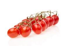 Свежие томаты вишни Стоковое фото RF