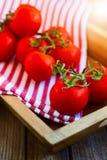 Свежие томаты в деревянном подносе стоковое изображение rf