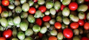 свежие томаты группы Стоковая Фотография RF