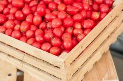 свежие томаты группы Стоковые Фотографии RF