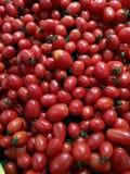 свежие томаты группы Стоковые Фото