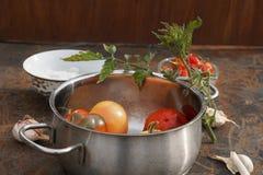 Свежие томаты и перец в баке Стоковое Фото