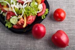 Свежие томаты и часть плиты с вегетарианским салатом Стоковая Фотография